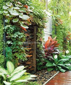 Hey everyone! landscape design These landscape garden are perfect for thelandscape design, landscape design front of house, landscape design plans, landscape design backyard, landscape design ideas so you need to try them out! Tropical Garden Design, Tropical Backyard, Tropical Landscaping, Garden Landscape Design, Tropical Plants, House Landscape, Tropical Gardens, Bali Garden, Balinese Garden
