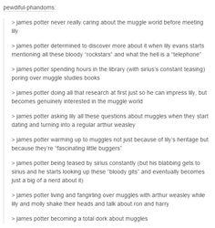 james potter becoming a muggle dork.