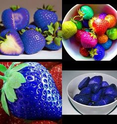 Strawberry Seeds fruit green black blue orange white red pink Multi-Colored Strawberry Red Climbing Strawberry And Giant Red Strawberry
