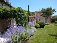 un peit coin de jardin en provence