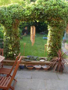 My garden in the sunshine :)