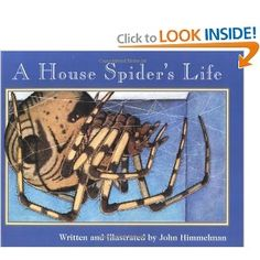 A House Spider's Life (Nature Upclose (Paperback)): Strikingly original watercolors depict each creature's world from its unique perspective. Simple text describes the creatures' movements and activities. House Spider, Expository Writing, Making Inferences, Mentor Texts, Reading Intervention, Used Books, Text Structures, Things To Sell, Charlotte's Web