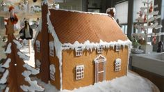 Martha and crafter Jodi Levine make cute cottages out of graham crackers. Make a whole village and they'd be perfect for a Christmas centerpiece.
