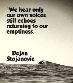 We hear only our own voices, still echoes returning to our emptiness.   ―Dejan Stojanovic