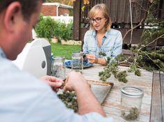 Steal this job: Marijuana growing coach