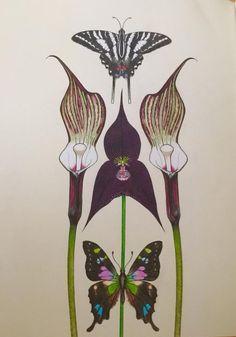 #DaisyFletcher #Intothewild Daisy, Art, Craft Art, Daisy Flowers, Daisies, Kunst, Gcse Art, Bellis Perennis, Art Education Resources
