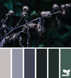nature tones #paintpalettes #colorscheme