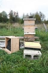 How to combine beehives