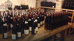 W Sulechowie będą kształcić winiarzy