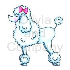 pink poodle drawing | Poodle With Pink Bow