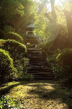 Stairs to the temple in Kamakura, Japan (by hanabi).:
