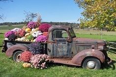 Old truck used for flower bed | Landscapes II on We Heart It. http://weheartit.com/entry/62513519/via/nene1313: