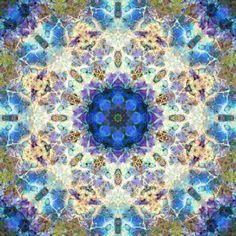Blue Blossom Mandala Photography by ALAYA GADEH  at ArtistRising.com