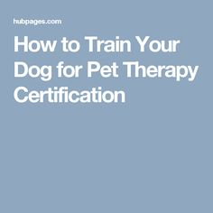 How to Train Your Dog for Pet Therapy Certification