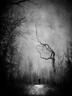 / Untitled photo by Lars van de Goor Shadow Tattoo, Spooky Places, Creepy, Dark Photography, Dark Forest, Dark Matter, Black N White Images, Dark Art, Light In The Dark
