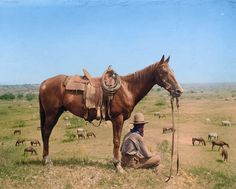 The Horse Wrangler, Bonham, Texas, June, 1910