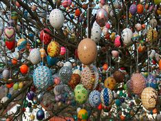 This is the Volker Easter Tree in Germany.  What started out as something fun with 18 colored plastic eggs has grown to a family tradition and 9,500 eggs!!  Absolutely beautiful!!