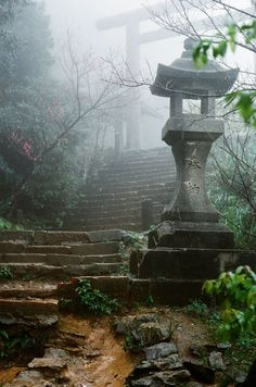 Shinto torii, Japan--steps leading up to the temple { or tea house for me :) }: