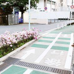 Daizawa nature walk