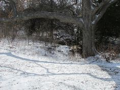 IMG_0159 by Rich Weatherly, via Flickr