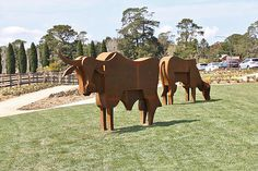 2017 Corten steel Life size – Commissioned by Retford Park, Estate of the late James Fairfax AO Corten Steel, Horses, Sculpture, Animals, Animales, Animaux, Horse, Sculpting, Animal Memes