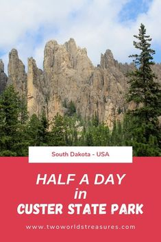 Find out what you can do & see during your half a day visit in Custer State Park in the Black Hills of South Dakota, USA. Click or save it for later. Usa Travel Guide, Travel Usa, Travel Guides, Travel Tips, Travel Destinations, Alaska Travel, Alaska Cruise, Canada Travel, Caprock Canyon State Park