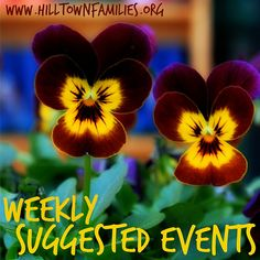 Our list of Weekly Suggested Events for Easter Weekend is up! Both Easter and Spring community events pack this weekend's schedule, along with family music and movies, library adventures, and loads of learning opportunities all week!