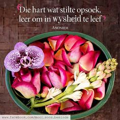 Wise Quotes, Qoutes, Wise Sayings, Soul Songs, Afrikaans Quotes, Printable Quotes, True Words, Woman Quotes, Hart