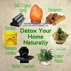 Detox your home                                                                                                                                                                                 More