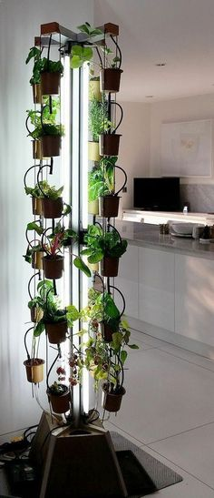 Aquaponics System - If you live in a small space, vertical indoor gardens are the way to go! Check out this creative vertical garden idea for growing herbs. Break-Through Organic Gardening Secret Grows You Up To 10 Times The Plants, In Half The Time, With Healthier Plants, While the Fish Do All the Work... And Yet... Your Plants Grow Abundantly, Taste Amazing, and Are Extremely Healthy #verticalgardening
