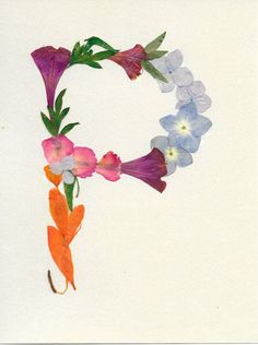 "Letter ""P"" Monogram - Original Pressed Flower Art, Framed Art, Wall Art, Real flowers, Dried leaves Dried And Pressed Flowers, Pressed Flower Art, Dried Flowers, Art Encadrée, Art Mural, Wall Art, Fleurs Diy, Flower Letters, Dry Leaf"