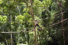 Cruzando con cuerdas un puente en plena selva