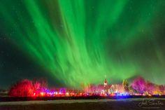 Voar para ver uma aurora boreal!  http://www.voarsemmedo.com/ Photograph Heavenly Aurora by Joel Santos on 500px