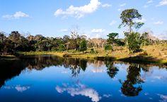 Manter a floresta em pé também beneficia a saúde humana. Acima, Seringal Cachoeira, Xapuri, AC. Foto: Nanda Melonio