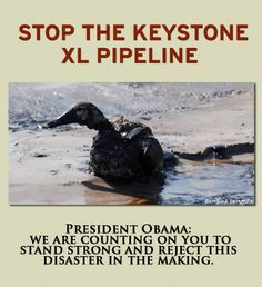 Stop the Keystone XL Pipeline    Submit comments by April 22, 2013 by email to:  keystonecomments@state.gov
