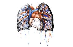 """cardiology-art: """"Rhythm by Abby Bunnell """" Electric Blue, In A Heartbeat, Watercolor Paper, Artsy Fartsy, Printmaking, Cool Art, Graffiti, Lion Sculpture, Ink"""
