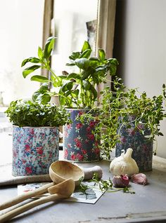 Finally! A use for all those old tin cans. Clean them up and prettify them with this easy to follow tin can flower pots craft project.