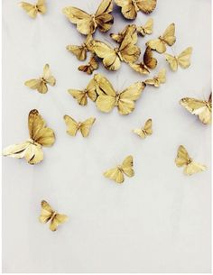 Gold elevates these butterflies to new level. And we have two 2015 Trends! Butterfly decals on Club Monaco's flagship's walls in NYC