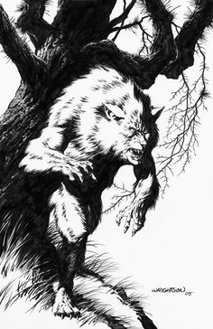 Bernie Wrightson Comic Books Art, Comic Book Artists, Bernie Wrightson, Werewolf Art, Halloween Artwork, Tinta China, Animal Sketches, Ink Illustrations, Creature Design
