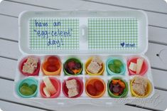 mini foods packed in egg carton for kids lunches/snacks