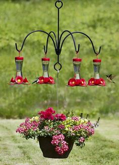 Hummingbird feeder chandelier!
