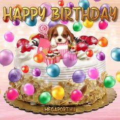 Happy Birthday - Megaport Media Birthday Wishes, Happy Birthday, Birthday Cake, Share Pictures, Animated Gifs, Chihuahua, Cupcakes, Kids, Roses