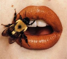 "Bee-stung lips by Irving Penn--can't put this in ""animals"" or ""human beauty"". Bee-stung lips by Irving Penn--can't put this in ""animals"" or ""human beauty""--it makes me want to scream a Hopeless Fountain Kingdom, Creation Art, Beyond Beauty, Fotografia Macro, Orange Aesthetic, Lip Art, American Art, Fine Art Photography, Photography Aesthetic"