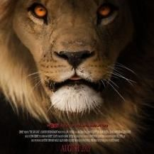 Mira El Rey Leon Pelicula Completa Online Castellano Movies To Watch Streaming Tv Shows Movies And Tv Shows