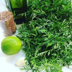 Hoje vai sair um pesto de folhas de cenoura com linhaça #inventando #jantar #saudavel #pesto #receita #amo #cozinha #gratidão #namastê by o_caminho_do_meio http://ift.tt/1qskna2