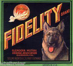 CRATE LABEL VINTAGE RARE FIDELITY GLENDORA GERMAN SHEPHERD DOG 1930S ORANGE