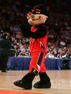 The University of Cincinnati Bearcats.  My whole family is rooting for this one...