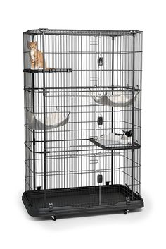 Prevue Pet Products Premium 4 Level Cat Home *** Check out this great product. (This is an affiliate link and I receive a commission for the sales)