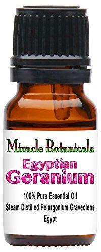 Egyptian Geranium Es