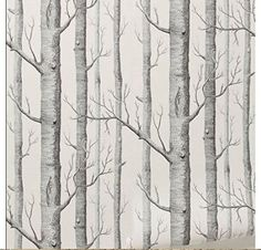 Tree Wall Paper large image of wilko trees wallpapers neutral wp332119 - opens in